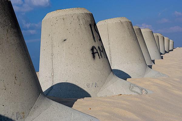 Tetrápodos en la playa